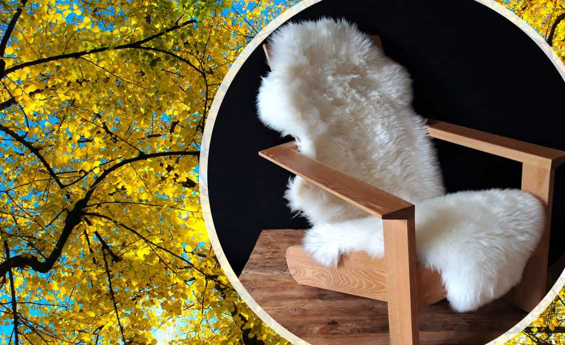 BeSeaside Fell Adirondack Chair Alsterstuhl Robinie Holz