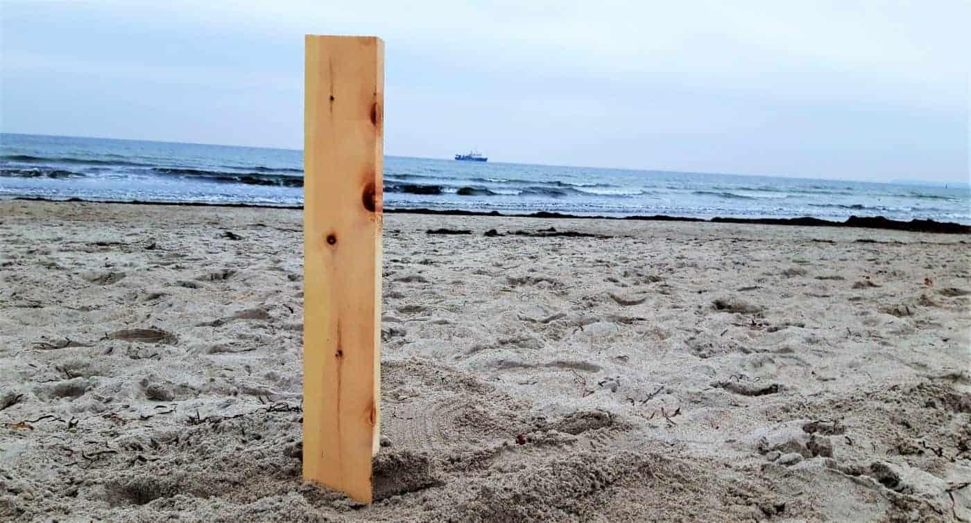 BeSeaside Zirbenholz Zirbe am Meer